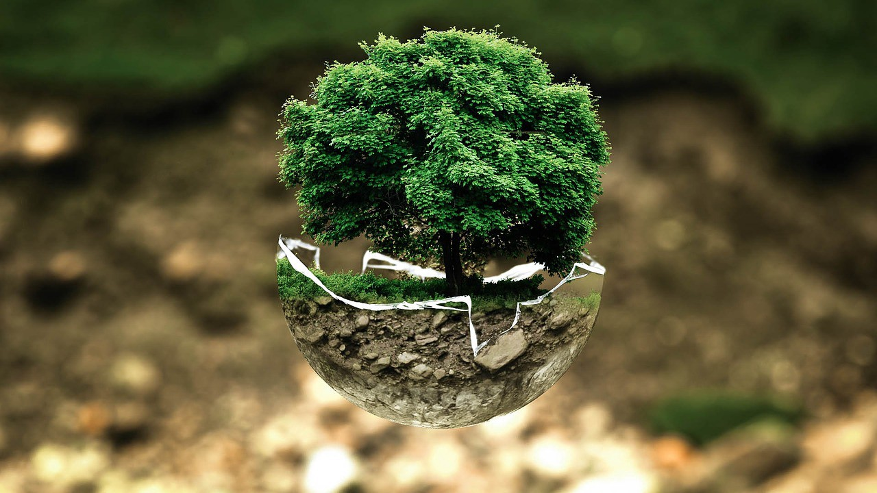 World Environment Day and Technical Documentation